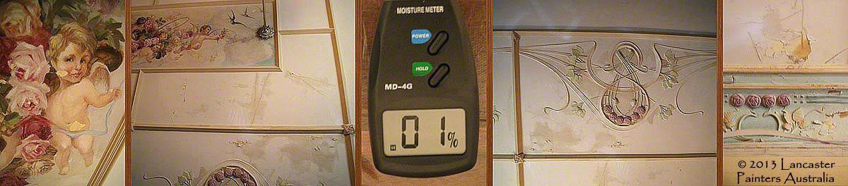 Water Damage & Moisture Testing