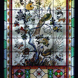 Peacock Heritage Leadlight