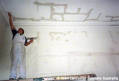 Professional Painting Preparation