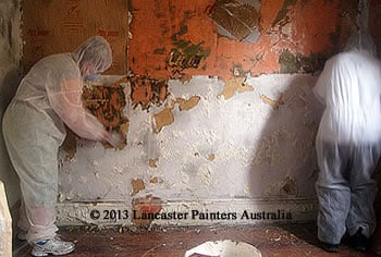Moisture & Lead Testing, Lead Removal Service Sydney NSW